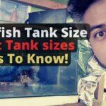 Goldfish tnk Size