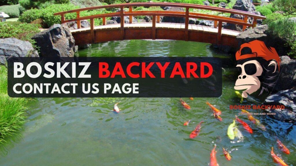 boskiz contact us page