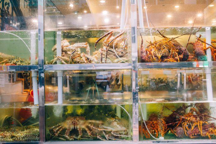 life sea fish shop window